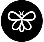 papillon-rond